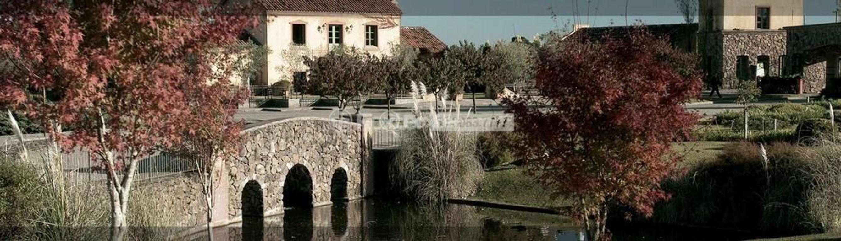 Casa 4 Dorm, Reserva da Serra, Canela (147199) - Foto 7