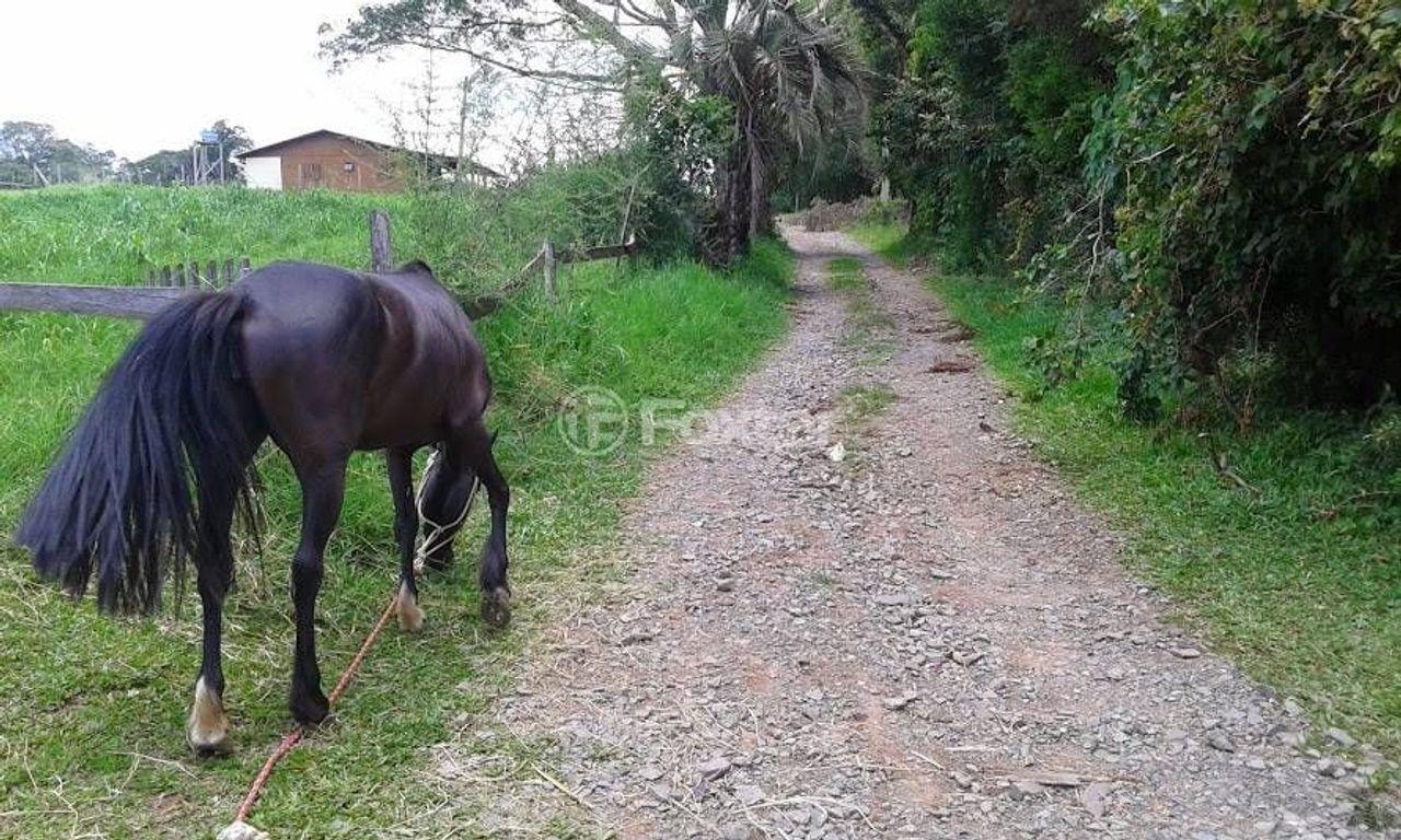 Terreno, Camboim, Sapucaia do Sul (119011) - Foto 7