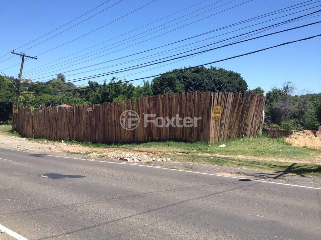 Foxter Imobiliária - Terreno, Cavalhada (119561) - Foto 5