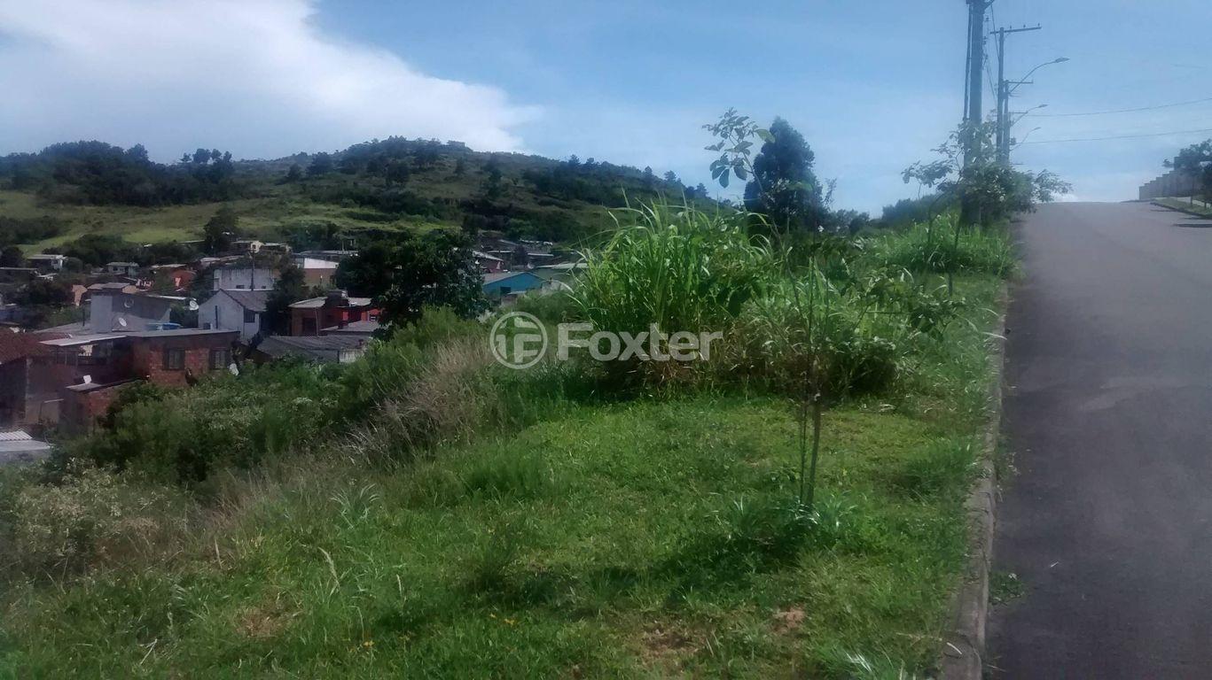 Foxter Imobiliária - Terreno, Hípica, Porto Alegre