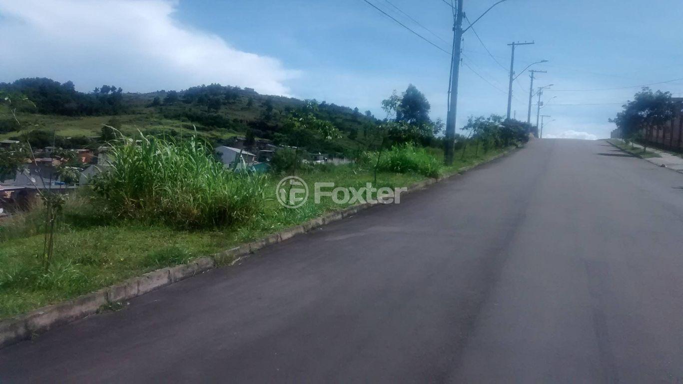 Foxter Imobiliária - Terreno, Hípica, Porto Alegre - Foto 2