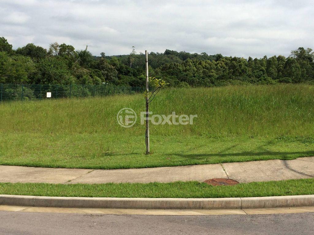 Foxter Imobiliária - Terreno, Vila Nova (119868) - Foto 12