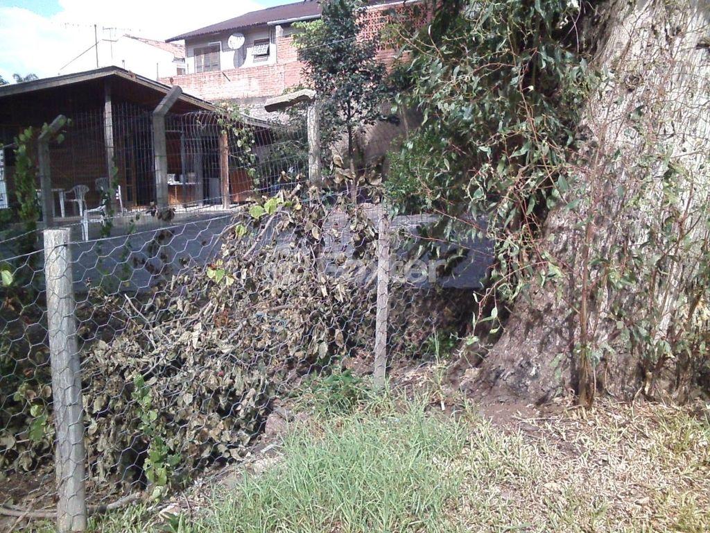 Foxter Imobiliária - Terreno, Cavalhada (122787) - Foto 15