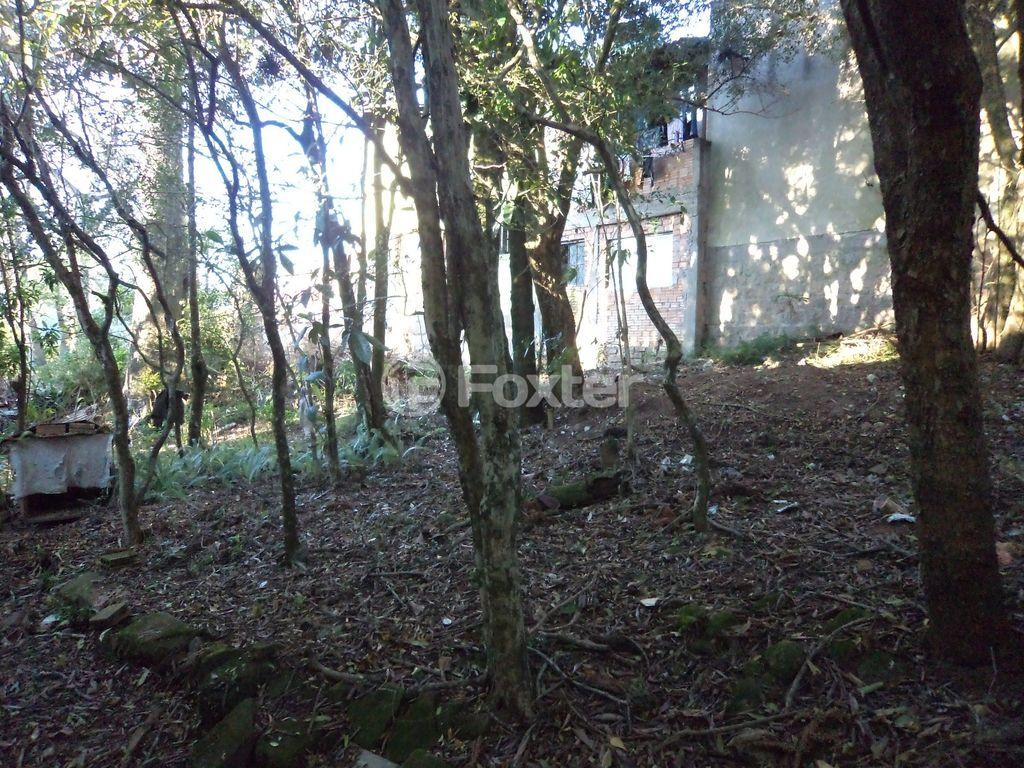 Terreno, Vila Nova, Porto Alegre (124979) - Foto 4