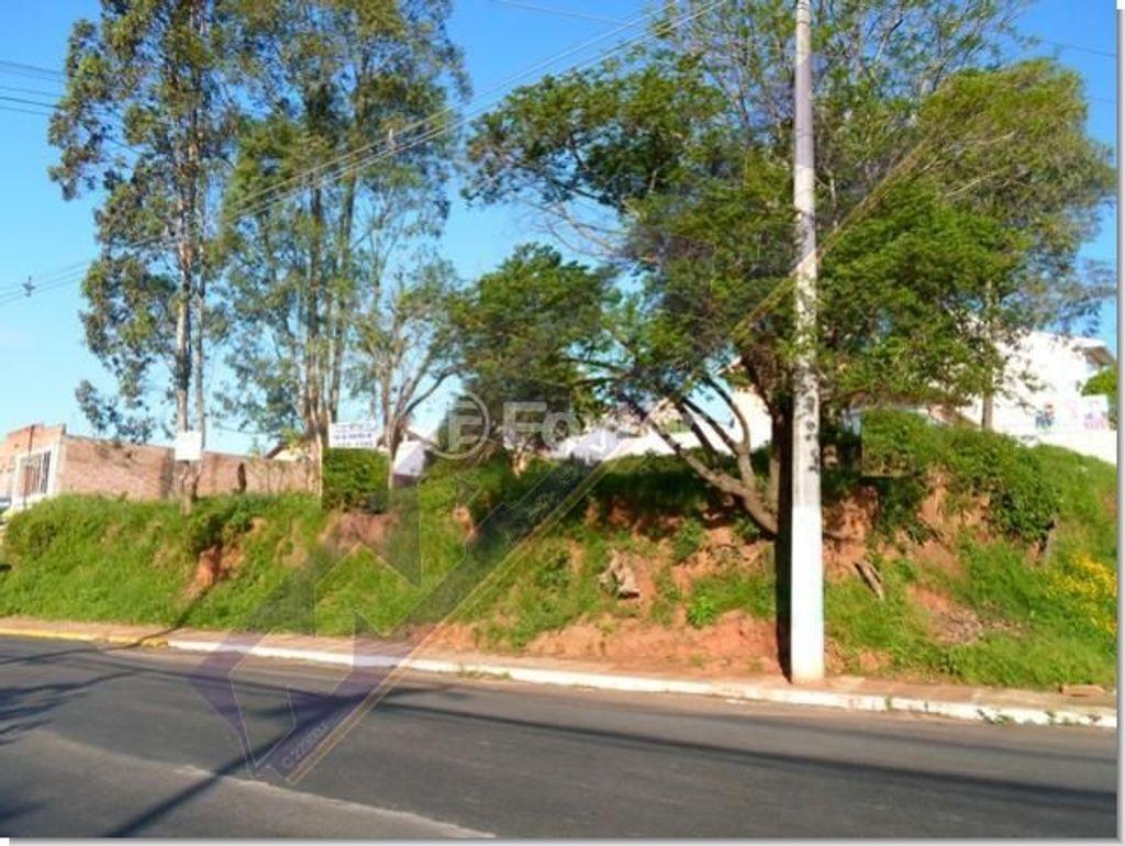 Terreno, Feitoria, São Leopoldo (127975) - Foto 2