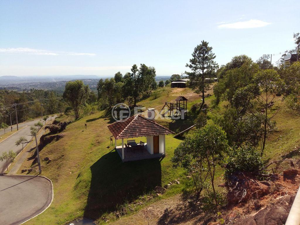 Foxter Imobiliária - Terreno, Protásio Alves - Foto 11