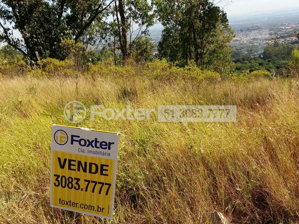 Foxter Imobiliária - Terreno, Protásio Alves - Foto 13
