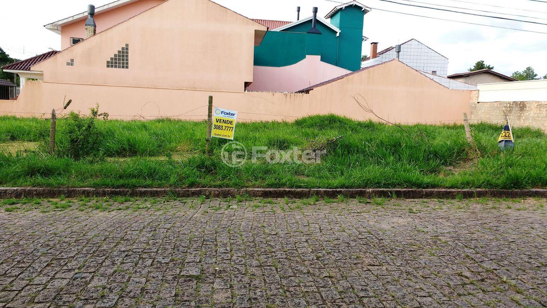 Foxter Imobiliária - Terreno, Ipanema (137903) - Foto 8