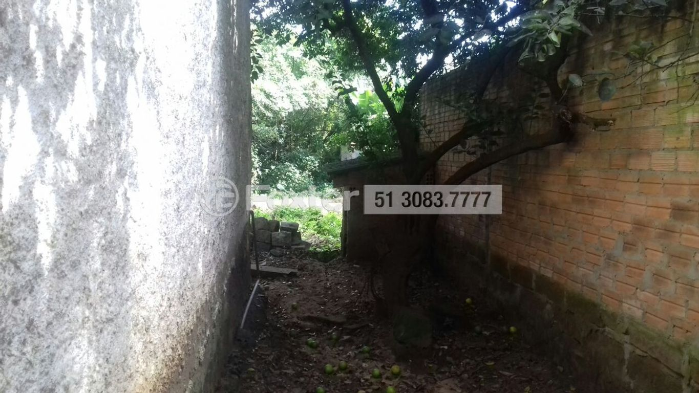 Terreno 1 Dorm, Vila Nova, Porto Alegre (139692) - Foto 6