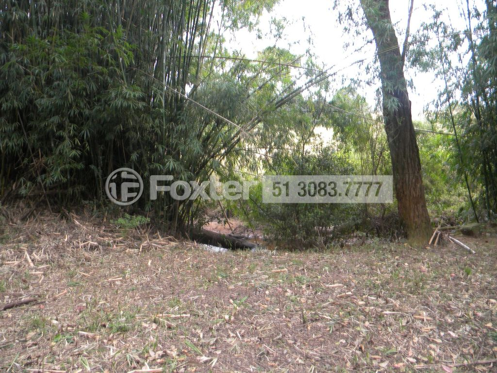 Terreno 2 Dorm, Centro, Glorinha (143065) - Foto 6