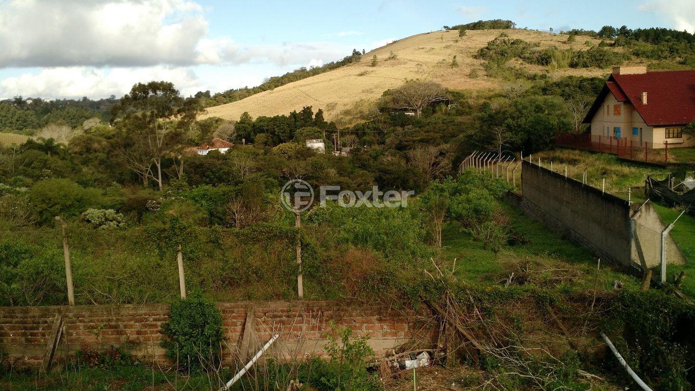 Foxter Imobiliária - Terreno 4 Dorm, Vila Nova - Foto 2