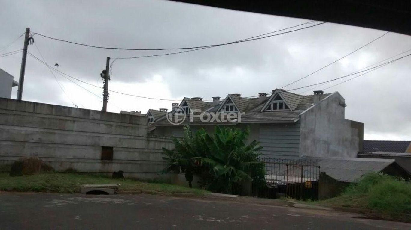 Casa 3 Dorm, Vila Nova, Porto Alegre (147376)
