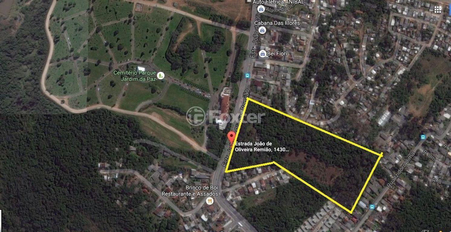 Foxter Imobiliária - Terreno, Agronomia (148698) - Foto 2
