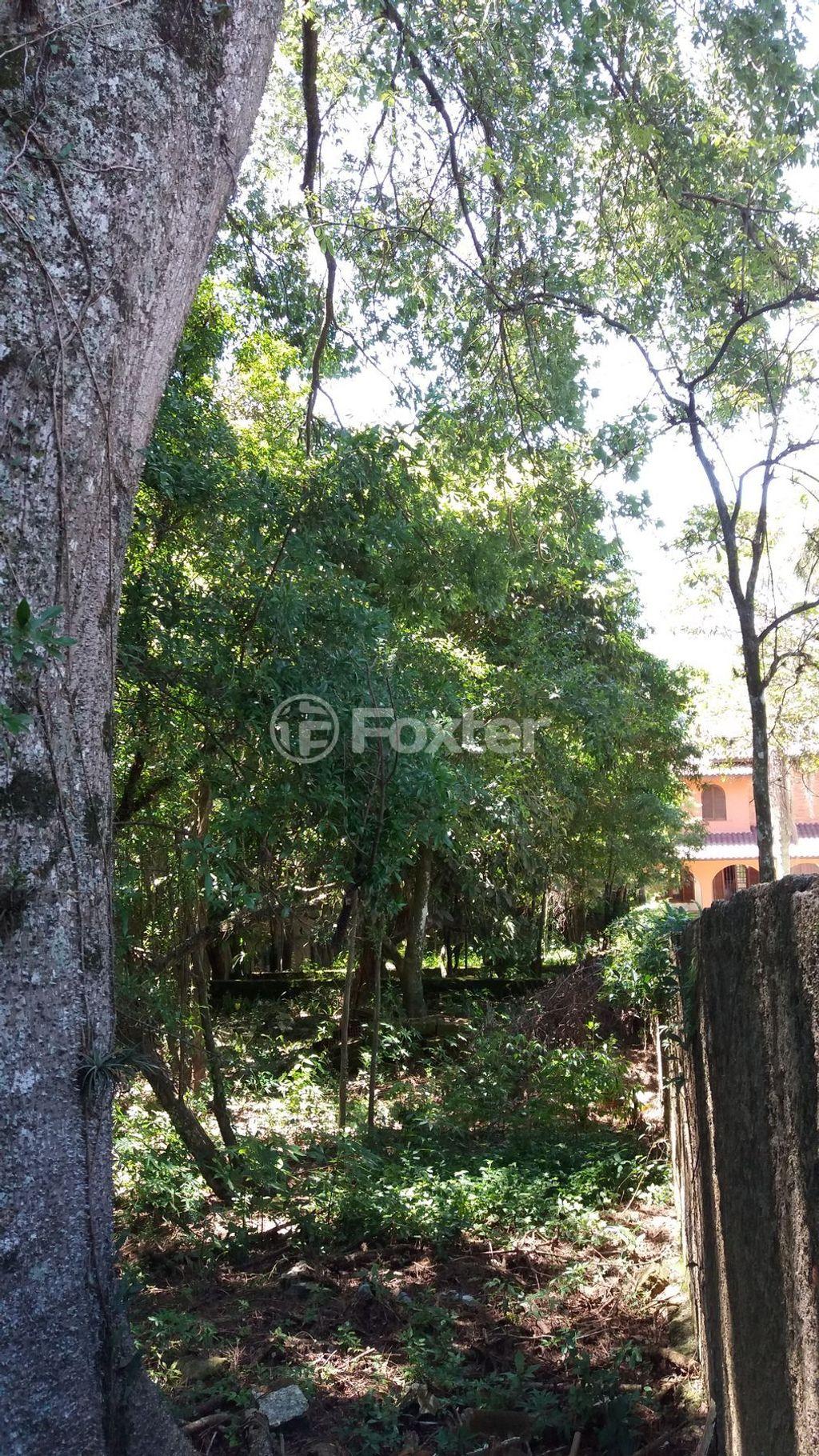 Terreno, Vila Nova, Porto Alegre (5023) - Foto 4